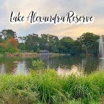 Lake Alexandra Reserve - tobringtogether.com
