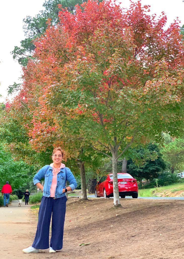 Autumn Shot at Lake Alexandra - tobringtogether
