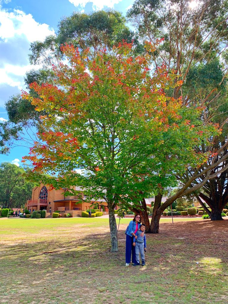 Autumn shot at Berrima NSW - tobringtogether,com