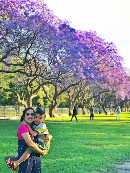 Jacaranda 2018 - tobringtogether.com
