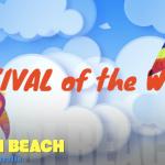 Festival of the Winds Bondi Beach